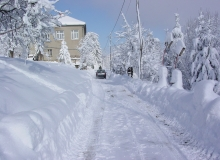 Plemenitas zimi (9)